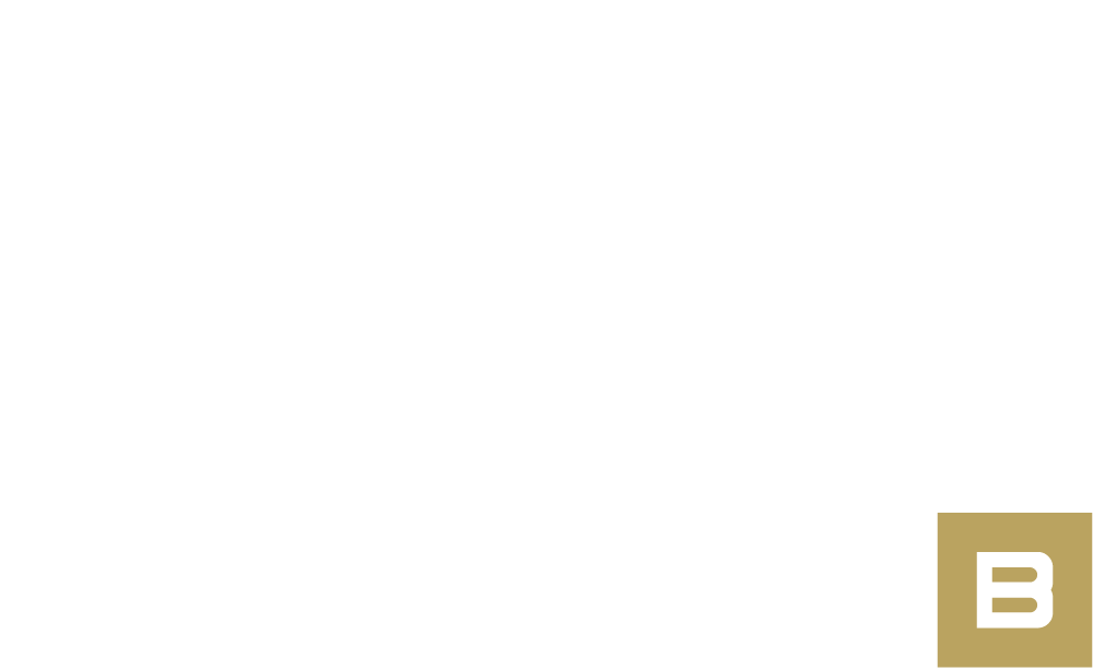 Logo Structure B blanc